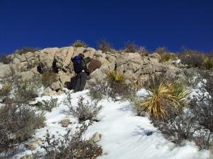 Artem picturing a cactus