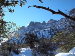 Organ Mountains, Pine Tree Trail. Photo courtecy of Artem Vovk