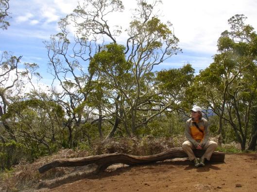 Sitting at the top of Pu'u Huluhulu