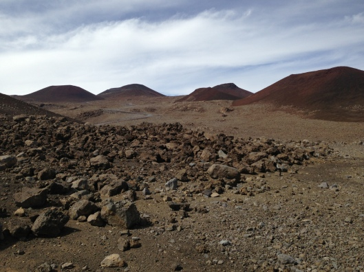 Mauna Kea Puus