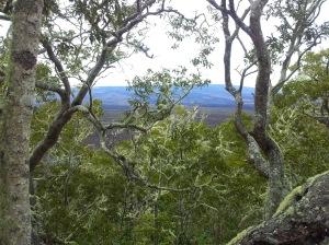 View to Mauna Loa